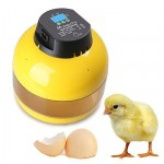 Magicfly Digital Eggs Incubator (with Egg Turner) Review